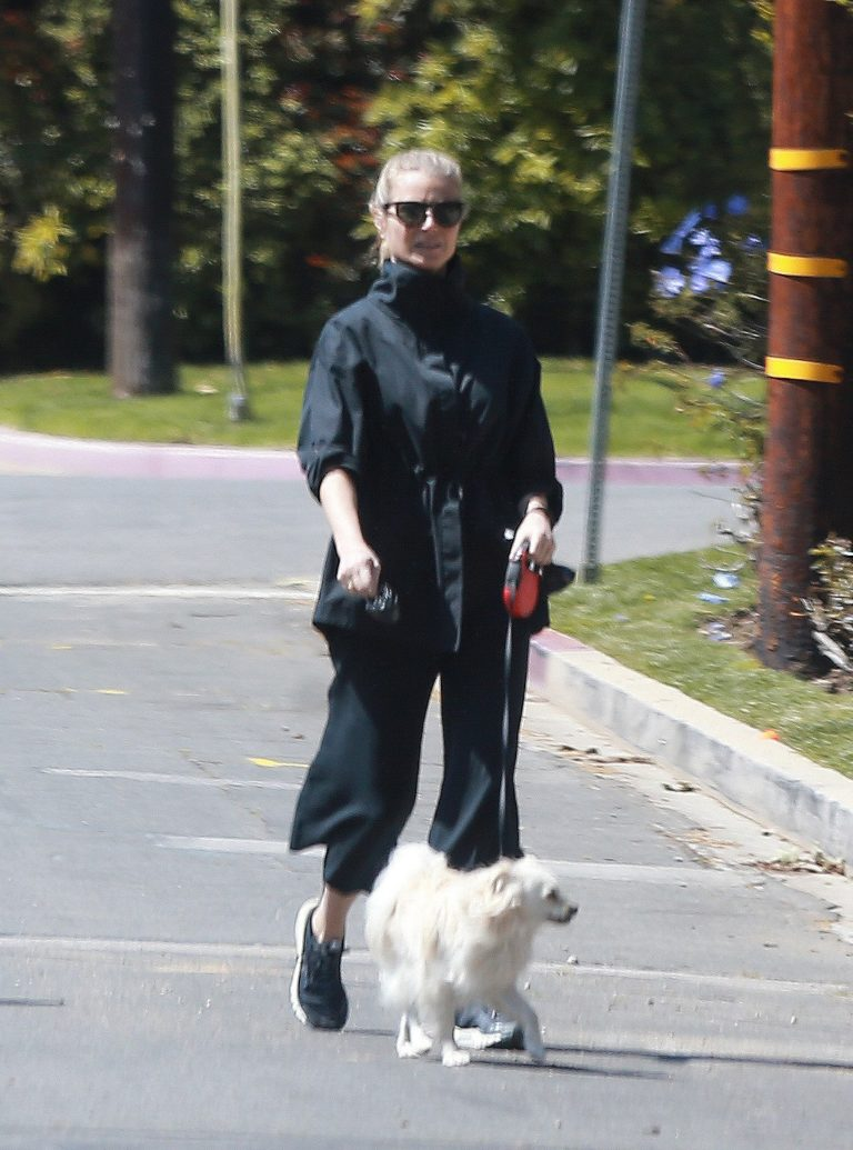 Gwyneth Paltrow walks the dog out in Los Angeles, California 2020/03/30 4