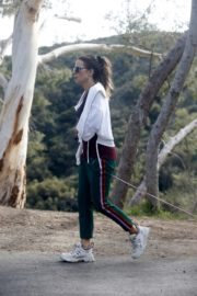 Kate Beckinsale walks with her dog in Los Angeles 2020/04/06 3