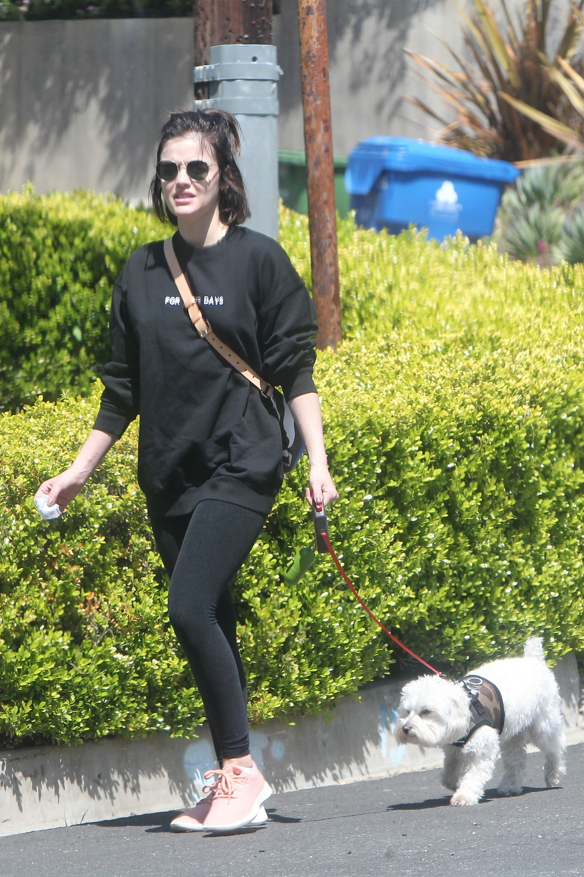 Lucy Hale for a walk with her dog Elvis in Los Angeles 2020/04/01 17