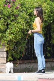 Ana De Armas seen in Yellow Top During a morning walk with her dog in California 2020/05/09 11