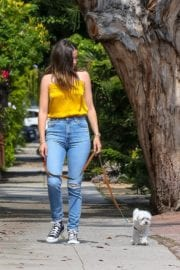 Ana De Armas seen in Yellow Top During a morning walk with her dog in California 2020/05/09 47