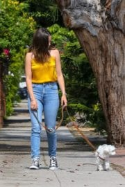 Ana De Armas seen in Yellow Top During a morning walk with her dog in California 2020/05/09 48