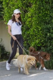 Aubrey Plaza walks with her dogs to the Pet Store in Los Feliz 2020/05/09 2