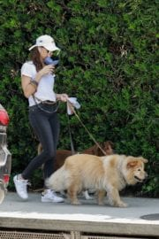 Aubrey Plaza walks with her dogs to the Pet Store in Los Feliz 2020/05/09 5