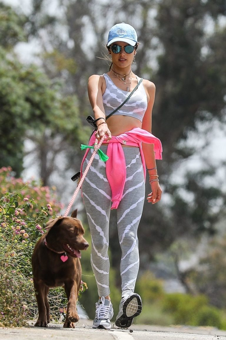 Alessandra Ambrosio Out with Her Dog in Pacific Palisades 2020/06/02 6