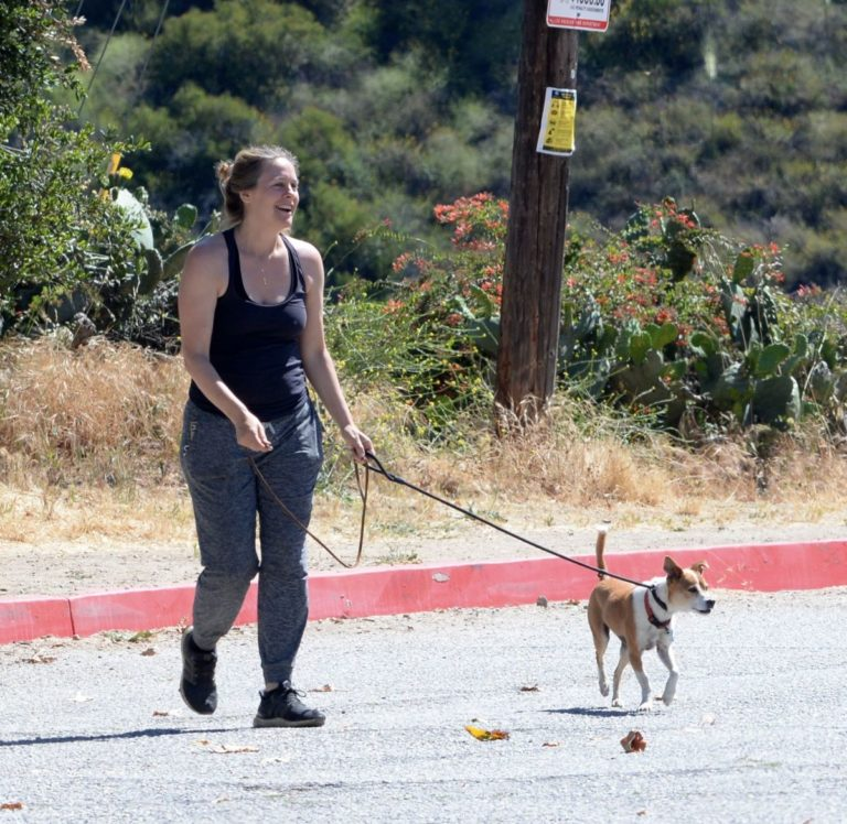 Alicia Silverstone Out with Her Dogs in Los Angeles 2020/06/07 2