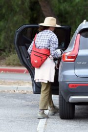 Andie MacDowell Out Hiking with Her Dogs in Los Angeles 2020/06/11 7