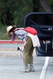 Andie MacDowell Out Hiking with Her Dogs in Los Angeles 2020/06/11 8