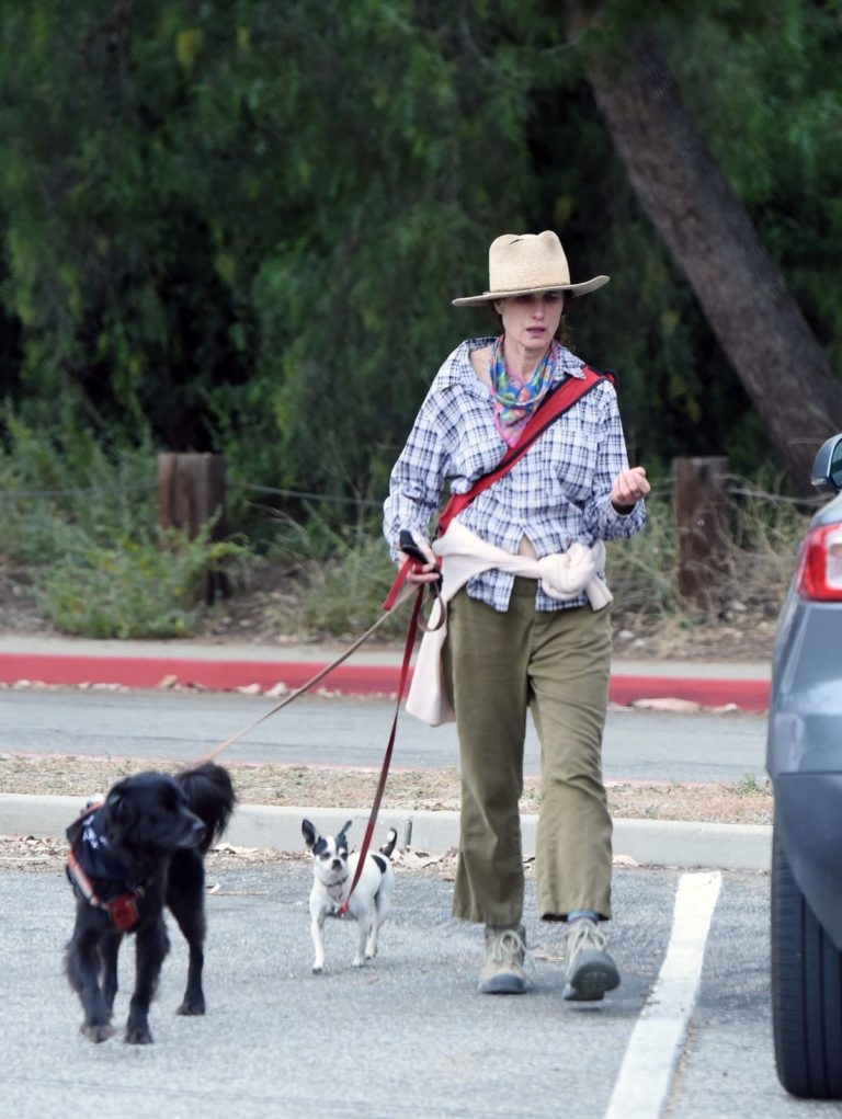 Andie MacDowell Out Hiking with Her Dogs in Los Angeles 2020/06/11 10
