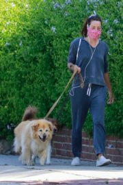 Aubrey Plaza Out with Her Dogs in Los Feliz 2020/06/14 1