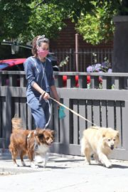 Aubrey Plaza Out with Her Dogs in Los Feliz 2020/06/14 2
