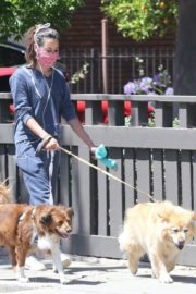 Aubrey Plaza Out with Her Dogs in Los Feliz 2020/06/14 3