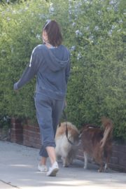 Aubrey Plaza Out with Her Dogs in Los Feliz 2020/06/14 6
