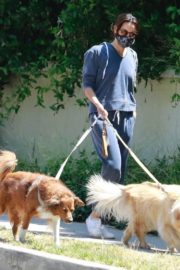 Aubrey Plaza Walks Her Dogs Out in Los Feliz 2020/06/13 2