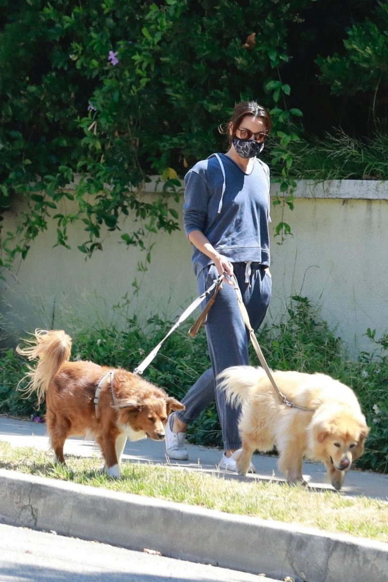 Aubrey Plaza Walks Her Dogs Out in Los Feliz 2020/06/13 4