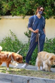 Aubrey Plaza Walks Her Dogs Out in Los Feliz 2020/06/13 5