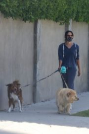Aubrey Plaza Walks Her Dogs Out in Los Feliz 2020/06/13 6
