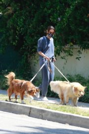 Aubrey Plaza Walks Her Dogs Out in Los Feliz 2020/06/13 13