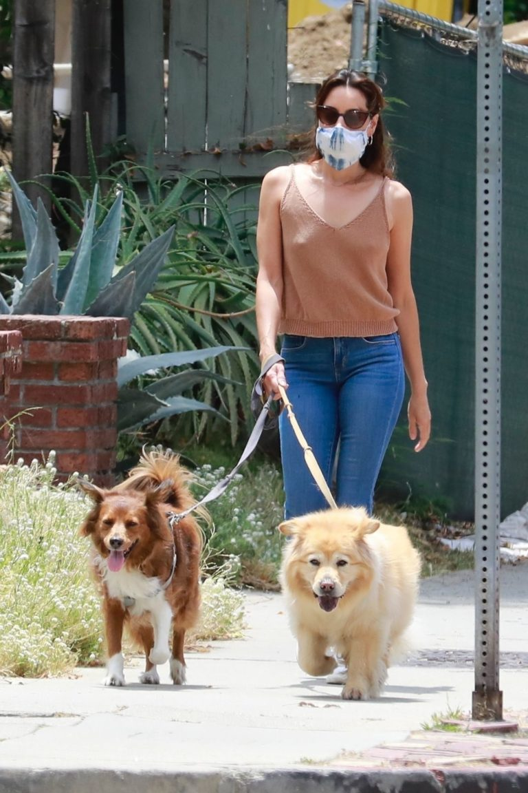 Aubrey Plaza Walks with Her Dogs Out in Los Feliz 2020/06/06 9