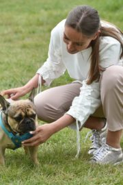 Chloe Ross Out with her Dog in Chigwell 2020/06/06 10