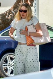 Elle and Dakota Fanning at a Birthday Party in Studio City 2020/06/15 7