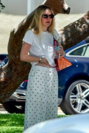 Elle and Dakota Fanning at a Birthday Party in Studio City 2020/06/15 8