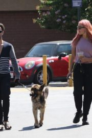 Emma Slater Out with Her Dogs in Los Angeles 2020/06/14 1