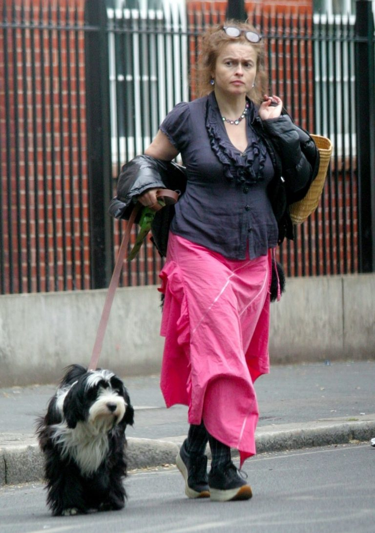 Helena Bonham Carter Out with Her Dog in London 2020/06/08 10