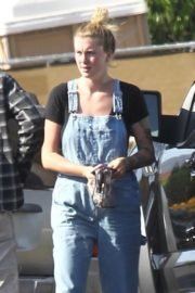 Ireland Baldwin in Denim Overalls Out in West Hollywood 2020/06/20 6
