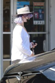 Kelly Osbourne at Healthy Spot Pet Supply Store in Los Angeles 2020/06/10 2
