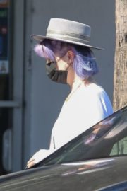 Kelly Osbourne at Healthy Spot Pet Supply Store in Los Angeles 2020/06/10 4