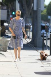 Kelly Rutherford Out with Her Dogs in Santa Monica 2020/06/10 1
