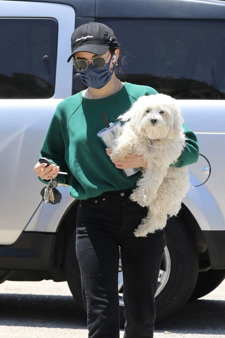 Lucy Hale and her Puppy Elvis at a Dog Park in Studio City 2020/06/04 2