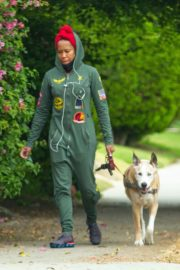 Regina King Out with Her Dog in Los Angeles 2020/06/05 1
