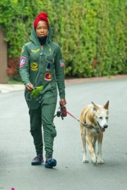 Regina King Out with Her Dog in Los Angeles 2020/06/05 9