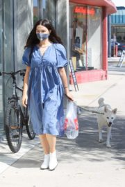 Crystal Reed Out with Her Dog in Los Angeles 2020/09/22 5