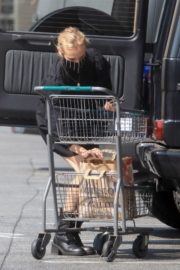 Diane Kruger Out for Grocery Shopping in Los Angeles 2020/09/22 2