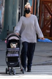 KALEY CUOCO Out with Her Dog at Manhattan's Hudson River Park 2020/09/20 2