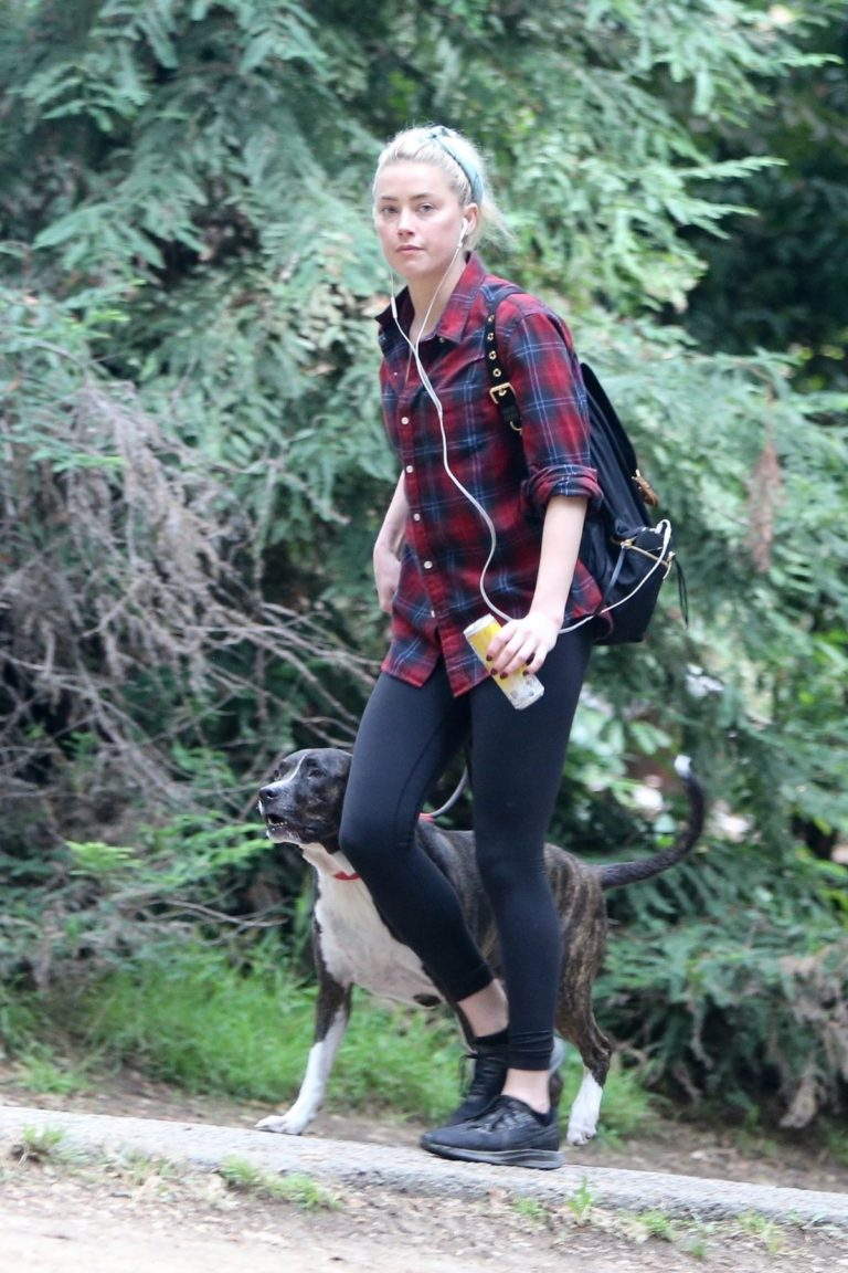Amber Heard walks with her dog out in Los Feliz 2020/10/25 8
