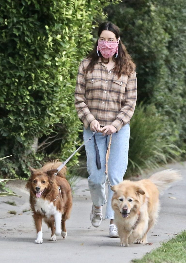 Aubrey Plaza and Jeff Baena Out with Their Dogs in Los Feliz 2020/10/24 9