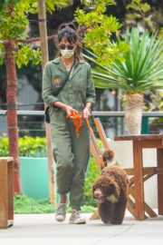 Jordana Brewster Out with Her Dog in Malibu 2020/10/25 1
