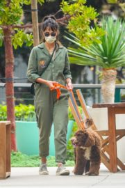 Jordana Brewster Out with Her Dog in Malibu 2020/10/25 5