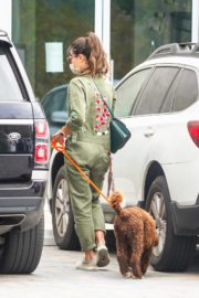 Jordana Brewster Out with Her Dog in Malibu 2020/10/25 6