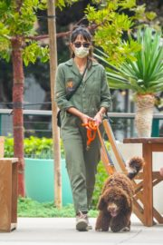 Jordana Brewster Out with Her Dog in Malibu 2020/10/25 13