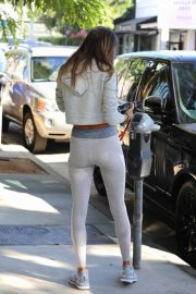 Alessandra Ambrosio Heading to a Private Workout Session in West Hollywood 2020/10/27 7