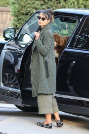 Arrives at a Friend's House in West Hollywood 2020/11/23 1