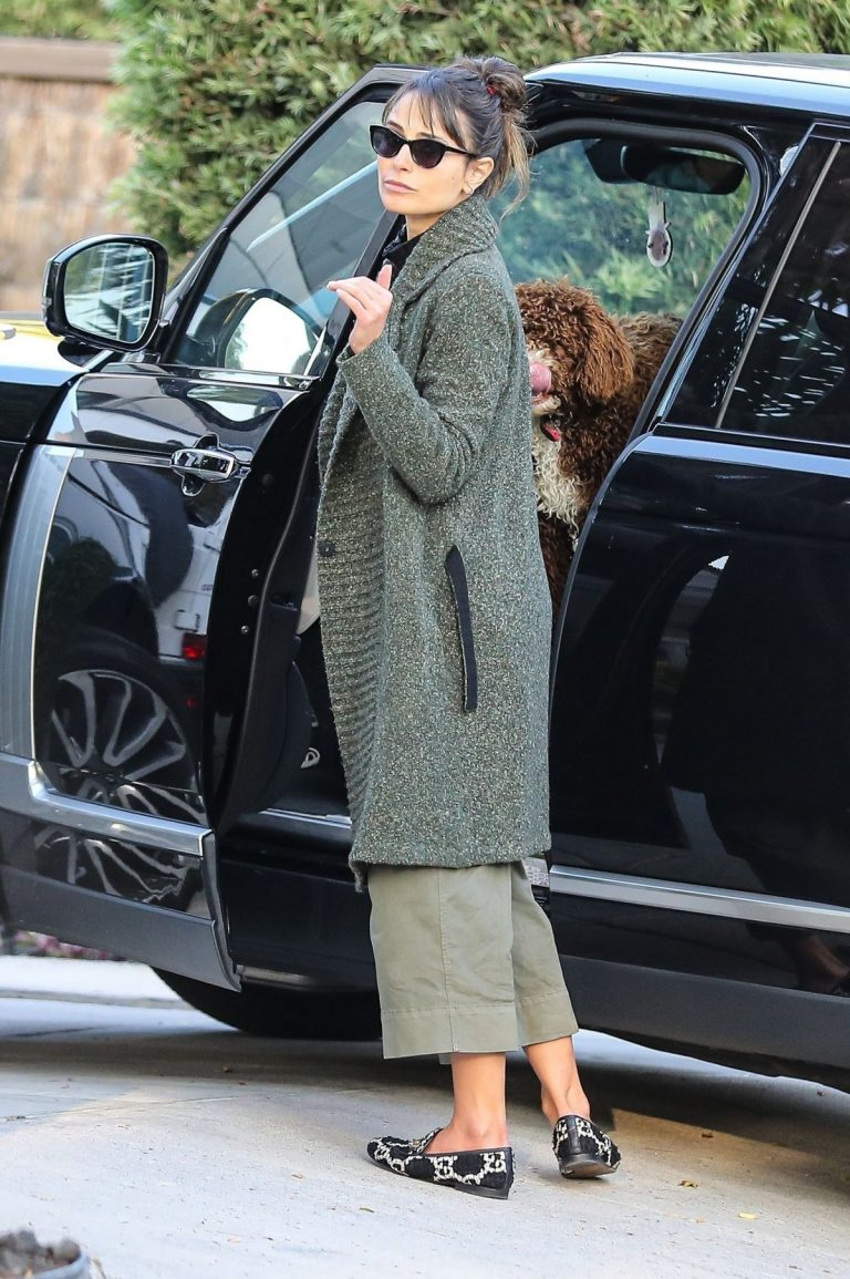 Arrives at a Friend's House in West Hollywood 2020/11/23 3