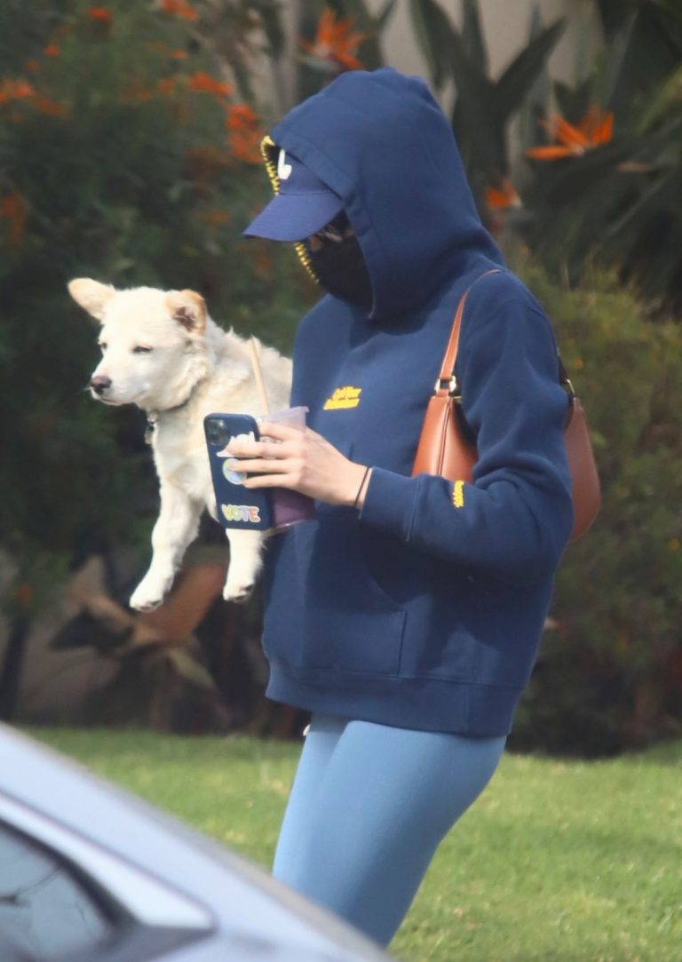Kaia Jordan Gerber Out with her Dog in West Hollywood 2020/11/23 3