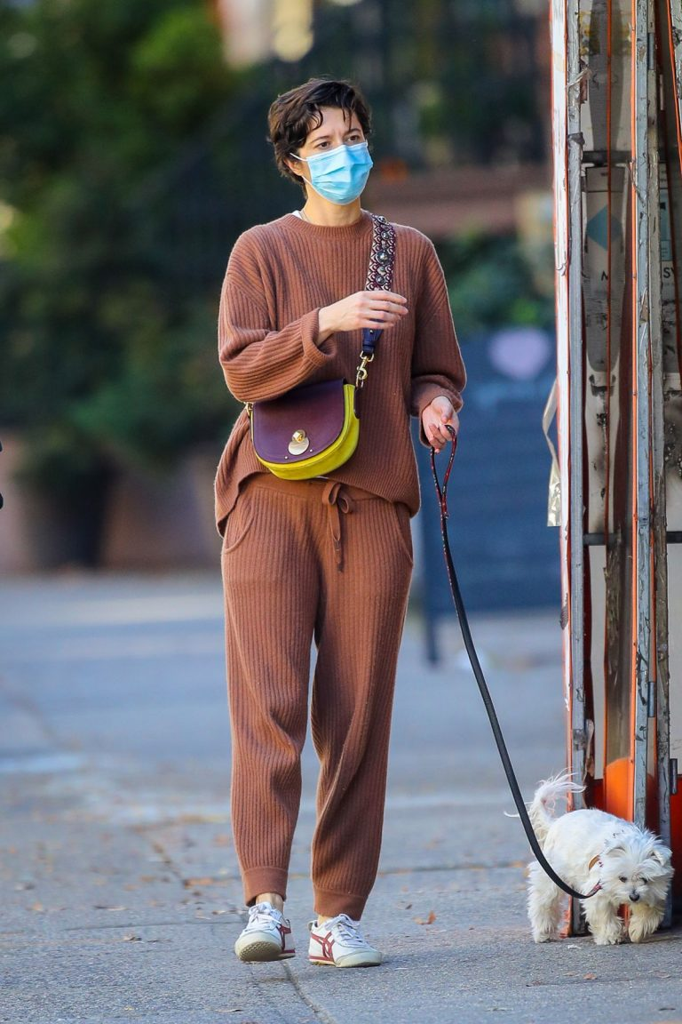 Mary Elizabeth Winstead Out with Her Dog in New York 2020/11/16 1