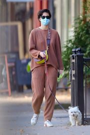Mary Elizabeth Winstead Out with Her Dog in New York 2020/11/16 4